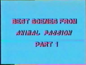 Best Of Animal Passion 01