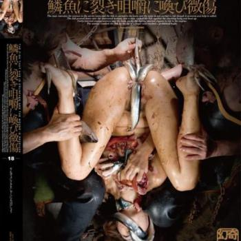 Genki – DGEN018 The fish that has is crunched and the wound is received