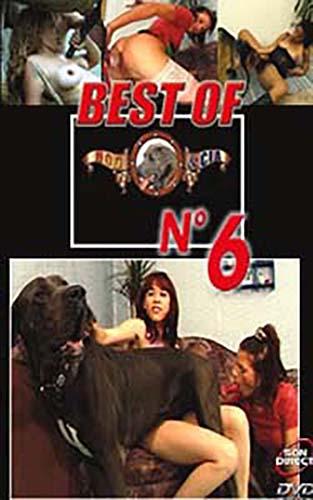 Best Of № 6