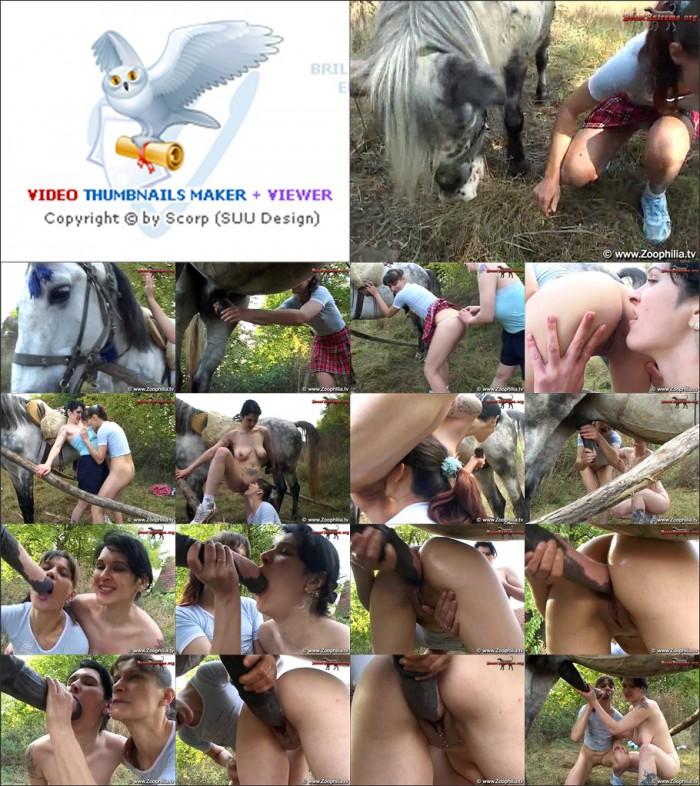 Super Zoo - 2 friends and a stallion.wmv