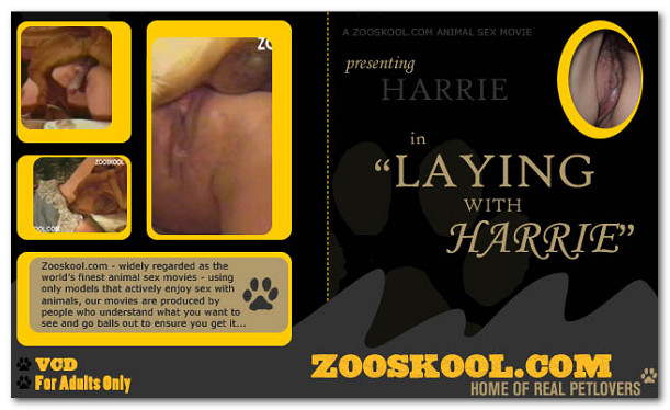 Zooskool - Laying With Harrie poster