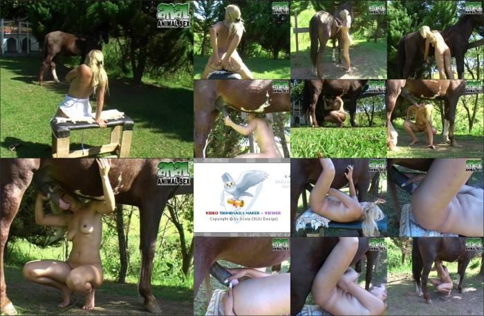 AnimalSexFun Horse Zoosex 14