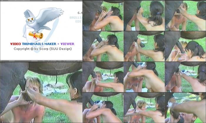 AnimalSexFun Horse Zoosex 18