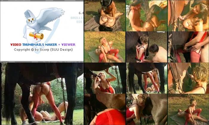 AnimalSexFun Horse Zoosex 22
