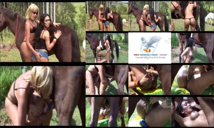 AnimalSexFun Horse Zoosex 37.wmv