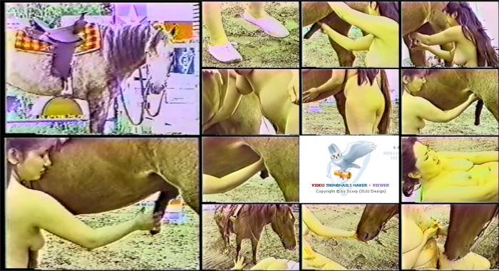 AnimalSexFun Horse Zoosex 41