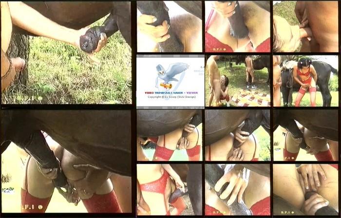 AnimalSexFun Horse Zoosex 52