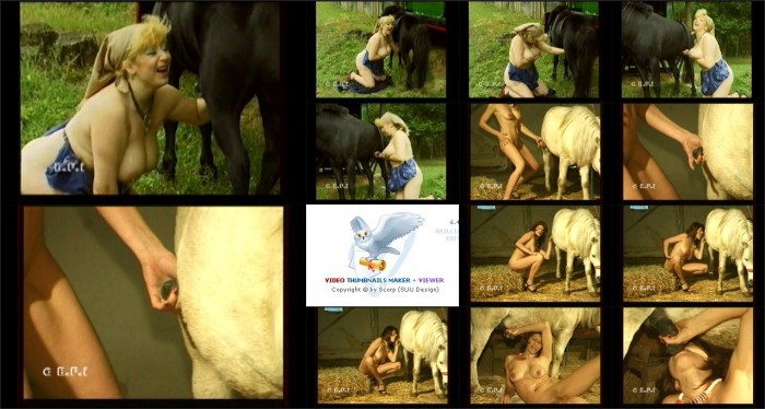 AnimalSexFun Horse Zoosex 57