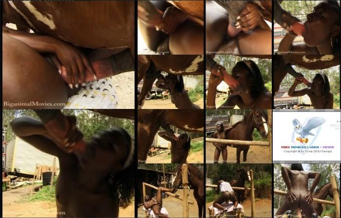 AnimalSexFun Horse Zoosex 78