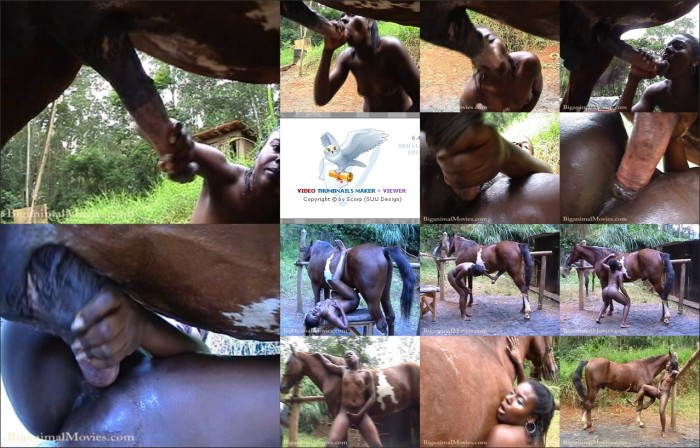 AnimalSexFun Horse Zoosex 91