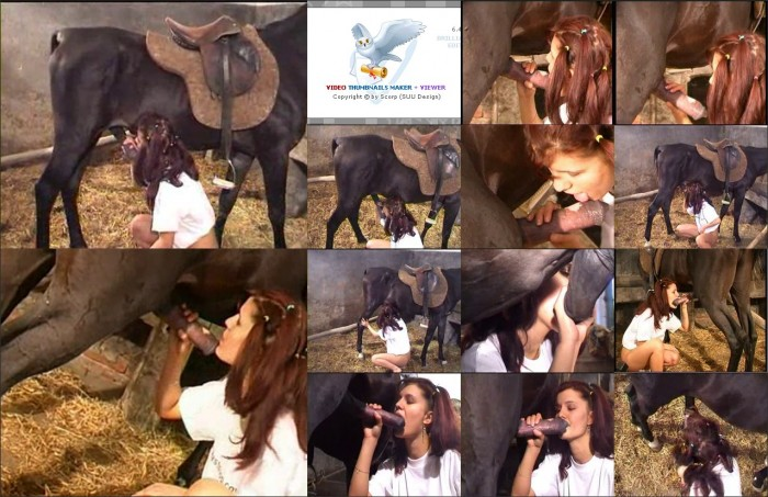 AnimalSexFun Horse Zoosex 115