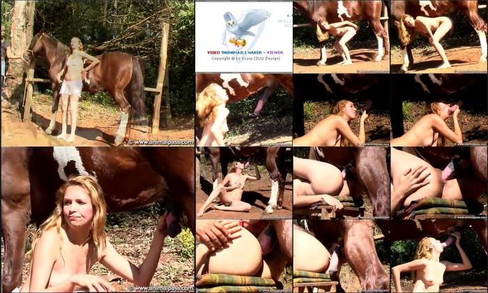 AnimalSexFun Horse Zoosex 164