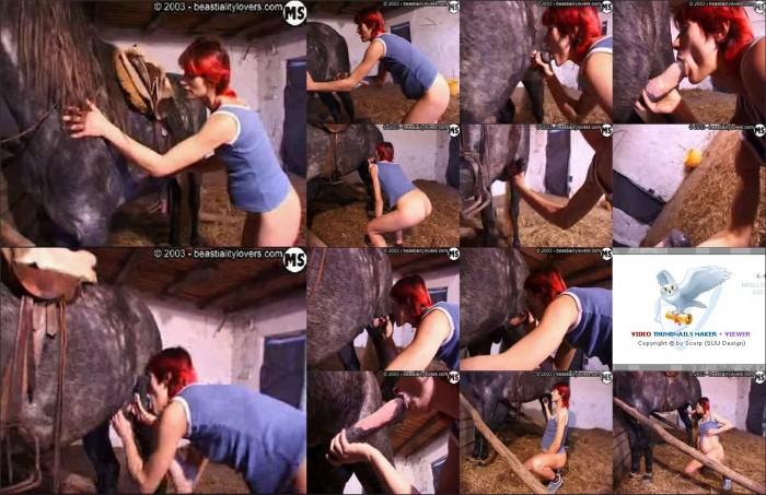 AnimalSexFun Horse Zoosex 179