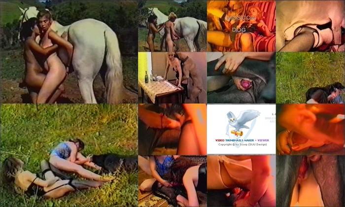 AnimalSexFun Horse Zoosex 186