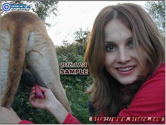 Animal Porno  Bestiality zoo tube Bigest taboo ever