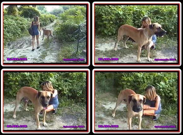 Bilara-033 AnimalSexFun Videos