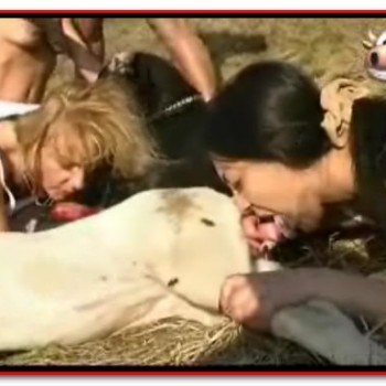 ZooMilf-008 AnimalSexFun Videos