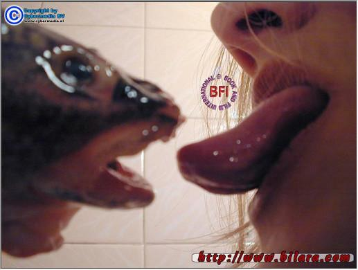Bilara-060 AnimalSexFun Videos