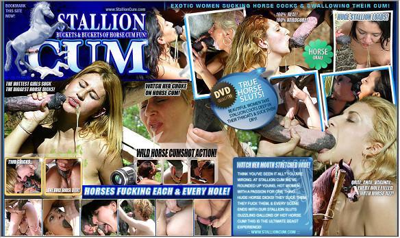 StallionCum 01