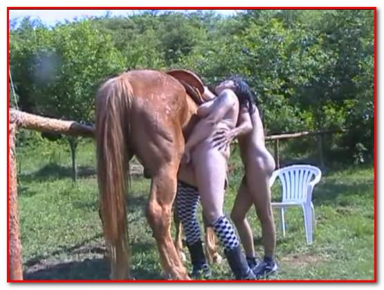 ZooMilf-033 AnimalSexFun Videos