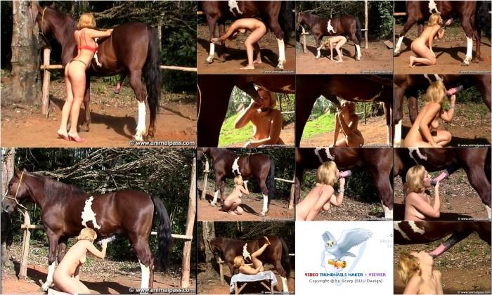 AnimalSexFun Horse Zoosex 240
