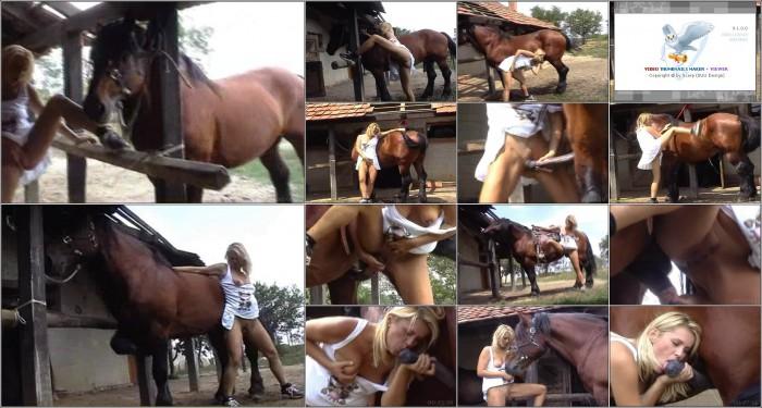 EuroZoo-023 Horse Beastiality Porn Videos