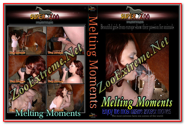 Super Zoo – Melting Moments poster